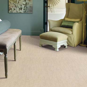 Caress Carpet by Shaw | Manassas, VA